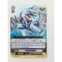 saving dolphin